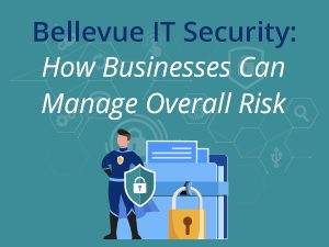 Find out what IT Security is and how your Bellevue business can benefit from them.